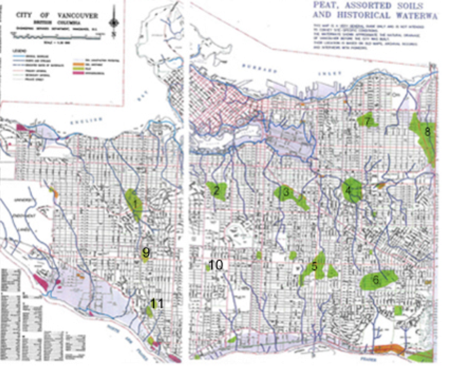 Peat Bog Areas In Vancouver