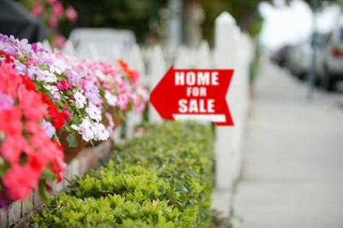 spring home for sale sign flowers hedges