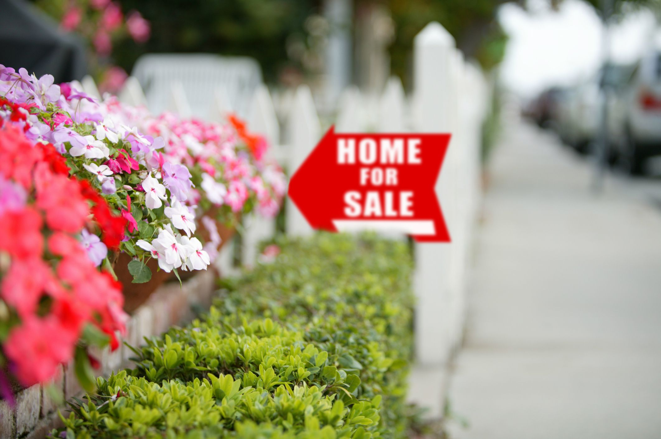 spring home for sale sign flowers hedges
