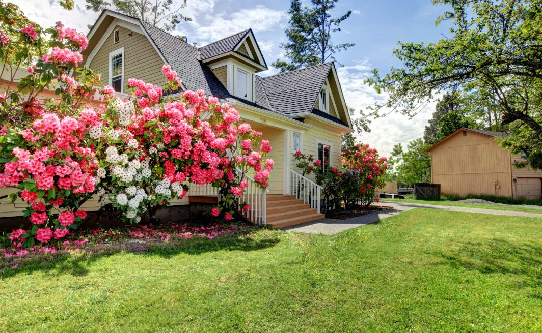 Spring Detached House with pink flowers